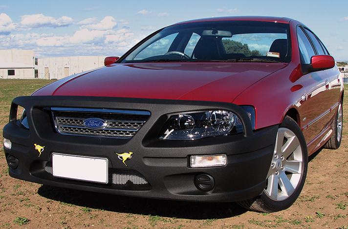 Ford Falcon BF2 and BF3 10-06 to 08-10 with a SmartBar bull bar